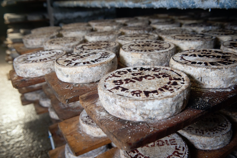 Fromages © Photo by Agence Producteurs Locaux Damien Kühn on Unsplash